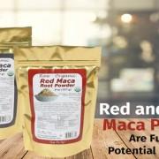 Maca Powder supplier Malaysia