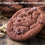 Raw food dessert recipes